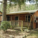 Brookside Cabin 1