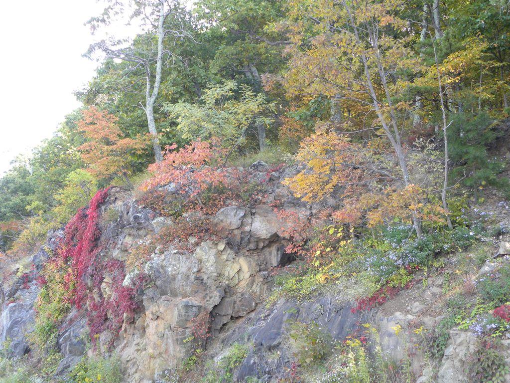2014 Fall Colors Arrive